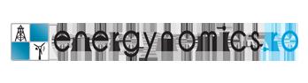 logo partener energynomics - rigc 2020